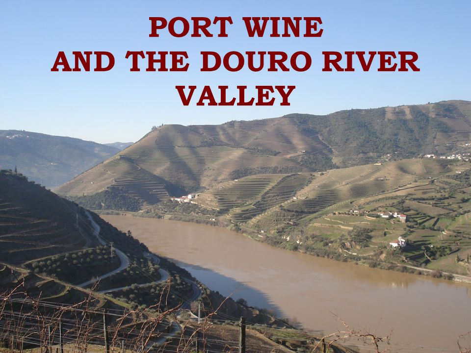 PORT WINE AND THE DOURO RIVER VALLEY