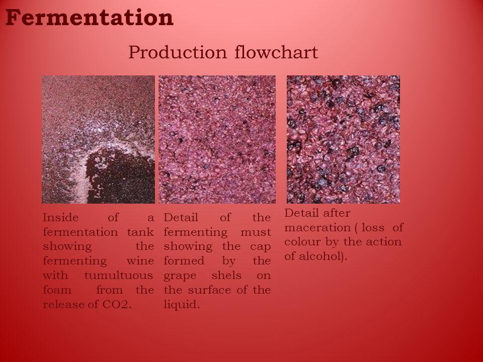 Fermentation Production flowchart