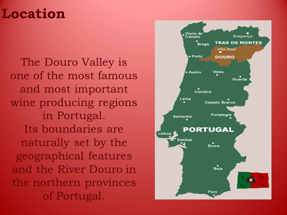 Location The Douro Valley is one of the most famous and most important wine producing regions in Portugal.