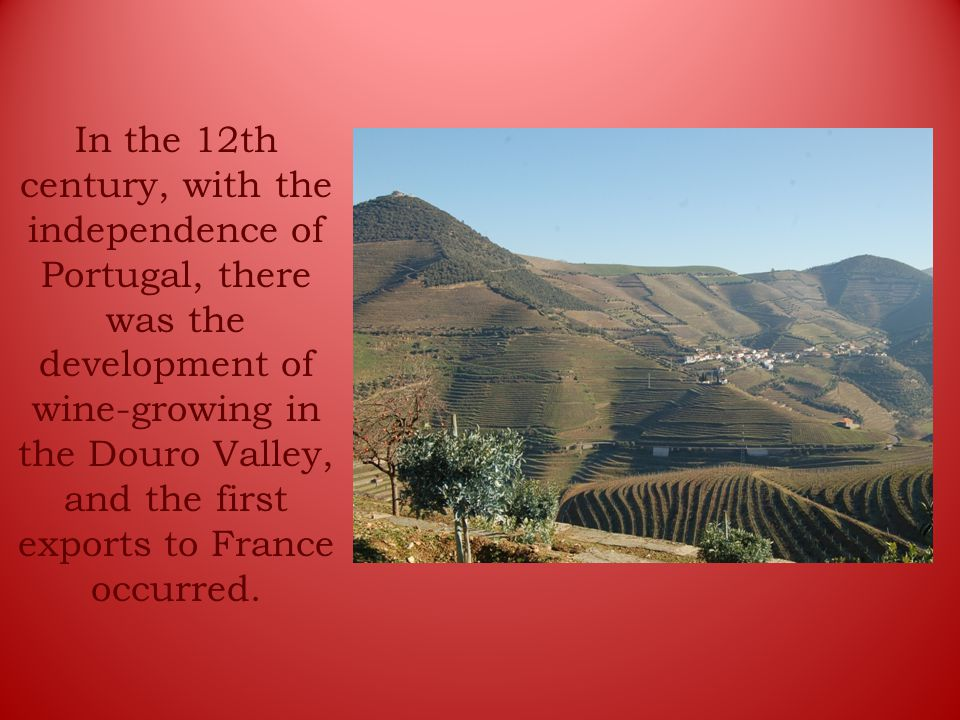 In the 12th century, with the independence of Portugal, there was the development of wine-growing in the Douro Valley, and the first exports to France occurred.