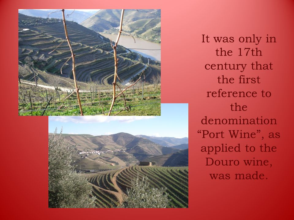 It was only in the 17th century that the first reference to the denomination Port Wine , as applied to the Douro wine, was made.