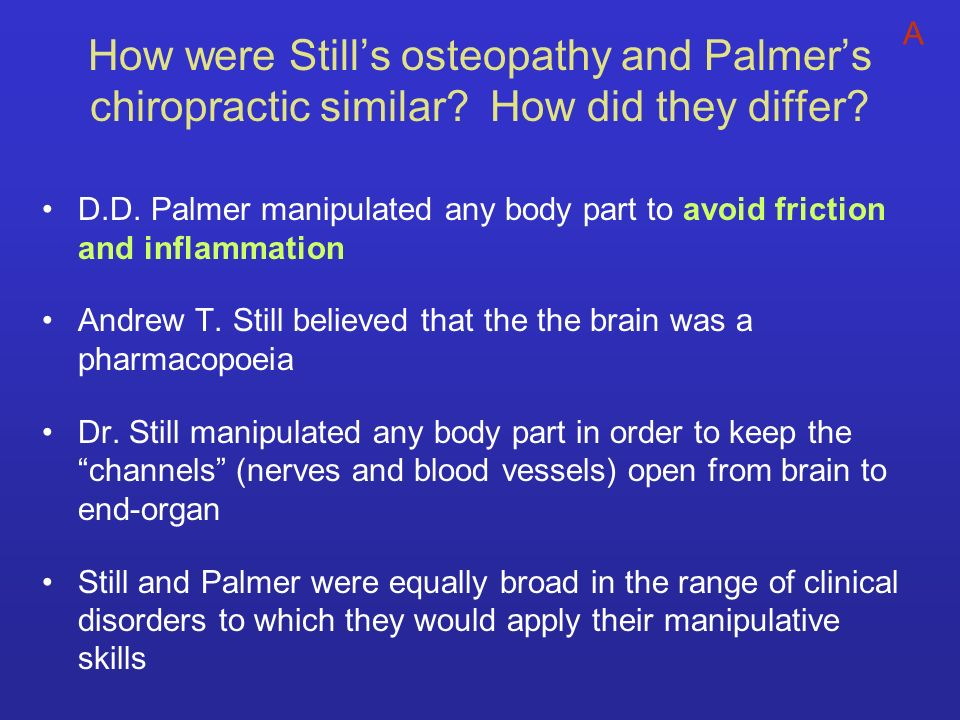 How were Still's osteopathy and Palmer's chiropractic similar