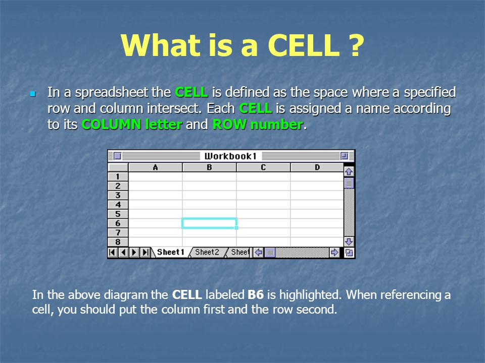 What is a CELL