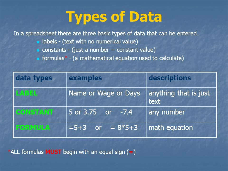 Types of Data data types examples descriptions LABEL