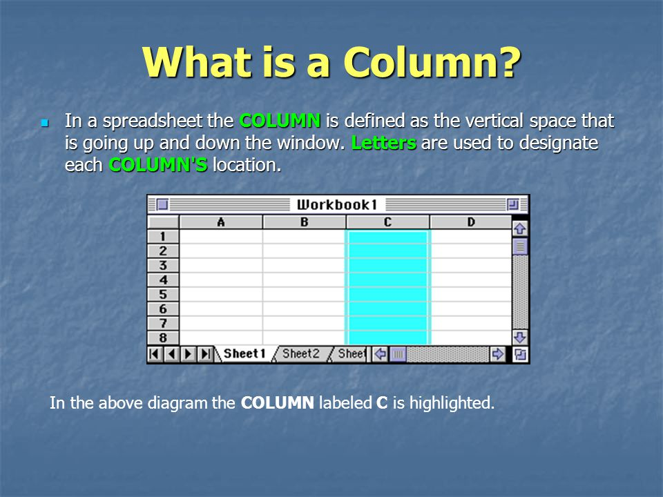 What is a Column