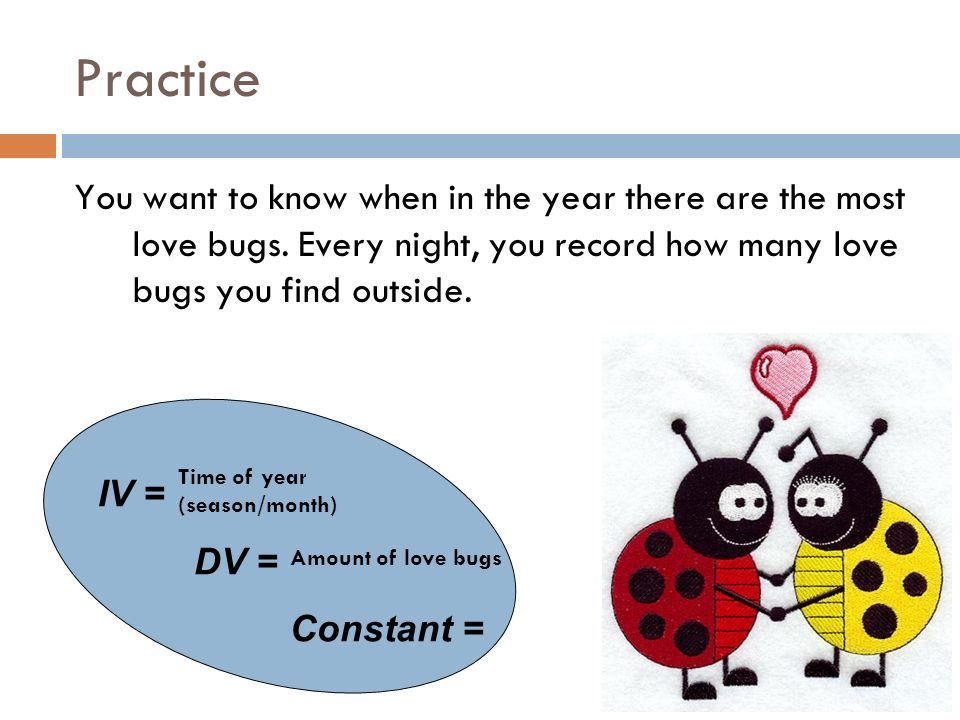 Practice You want to know when in the year there are the most love bugs. Every night, you record how many love bugs you find outside.