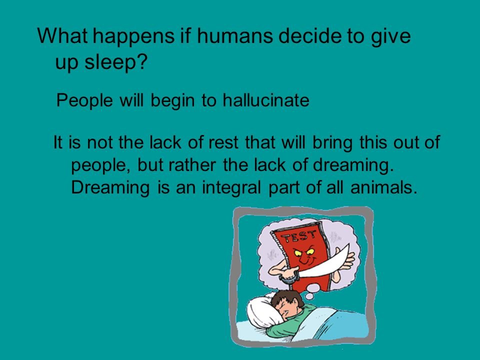 What happens if humans decide to give up sleep