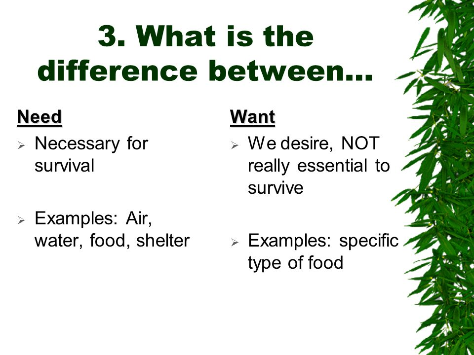 3. What is the difference between…