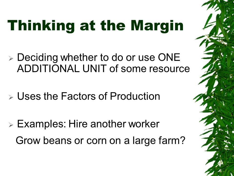 Thinking at the Margin Grow beans or corn on a large farm