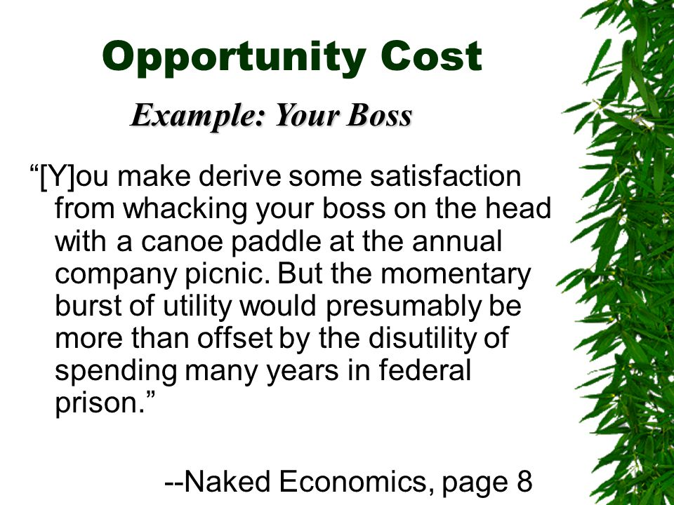 Opportunity Cost Example: Your Boss