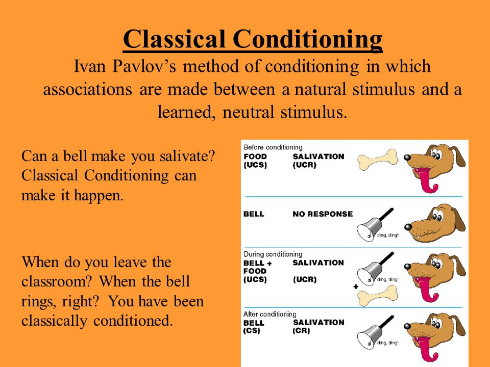 learning classical conditioning Learning/classical conditioning learn with flashcards, games, and more — for free.