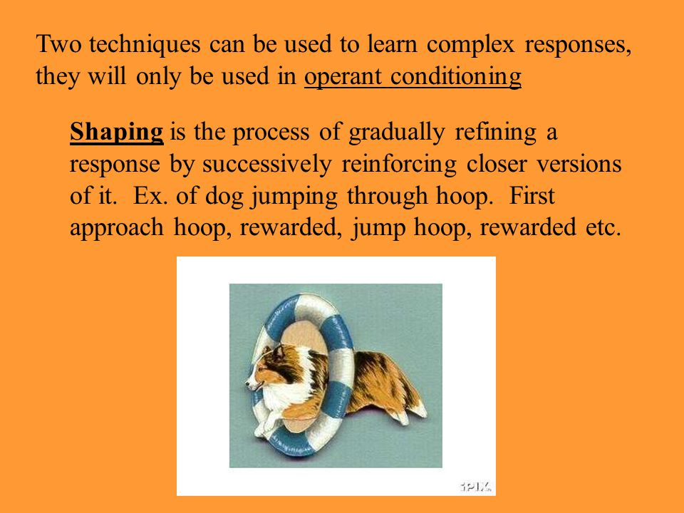 Two techniques can be used to learn complex responses, they will only be used in operant conditioning