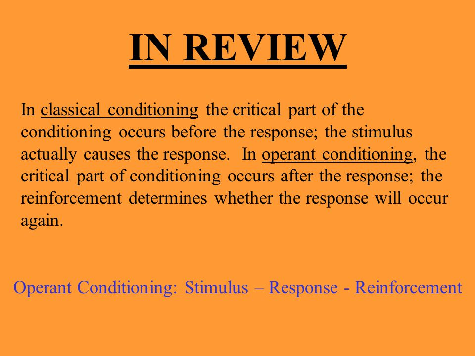 Operant Conditioning: Stimulus – Response - Reinforcement