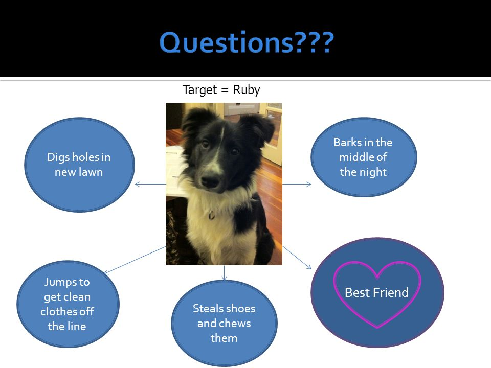 Questions Best Friend Target = Ruby