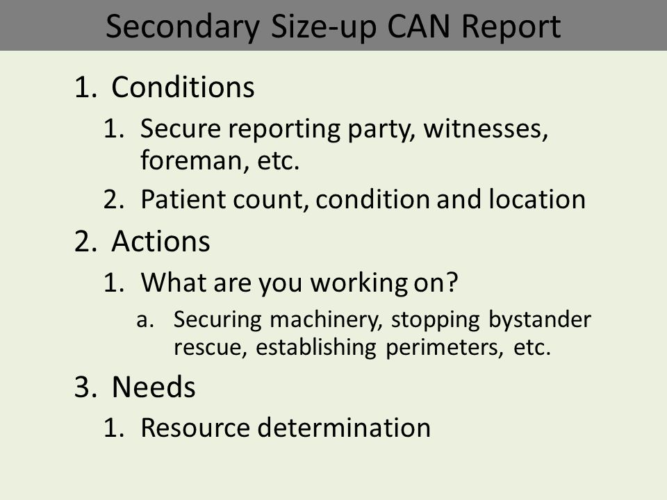 Secondary Size-up CAN Report