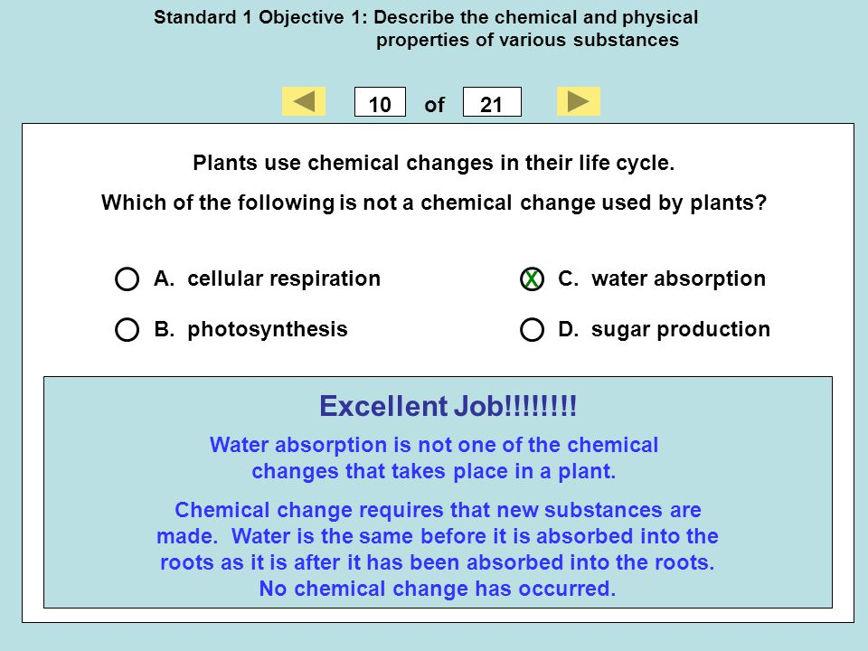 Standard 1 Objective 1: Describe the chemical and physical