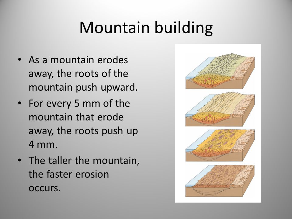 Mountain building As a mountain erodes away, the roots of the mountain push upward.