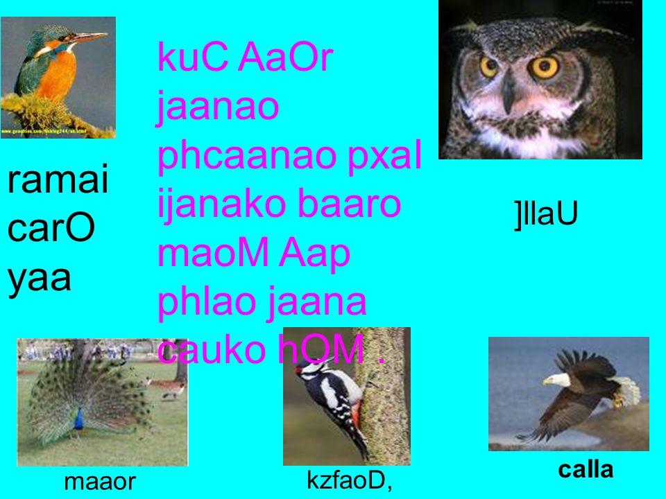 kuC AaOr jaanao phcaanao pxaI ijanako baaro maoM Aap phlao jaana cauko hOM .
