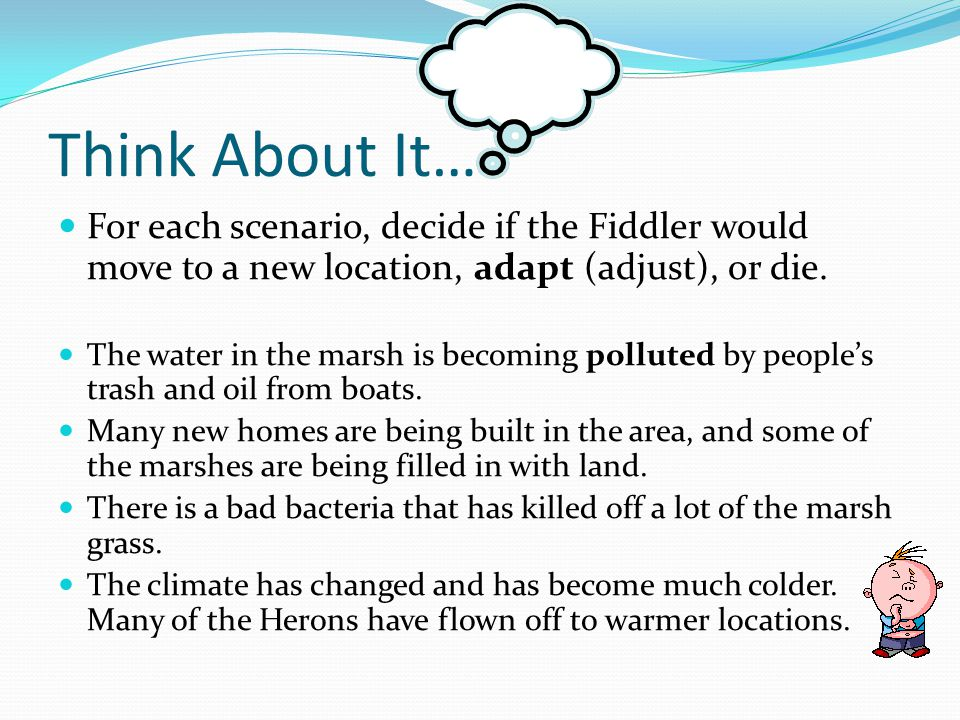 Think About It… For each scenario, decide if the Fiddler would move to a new location, adapt (adjust), or die.