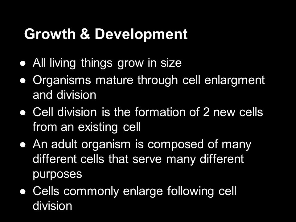 Growth & Development All living things grow in size