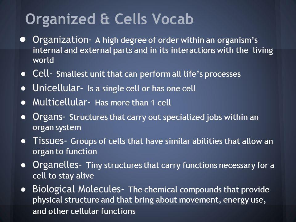 Organized & Cells Vocab