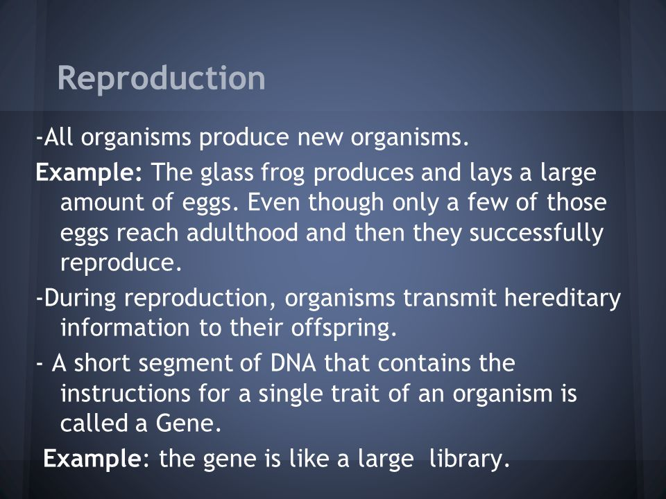 Reproduction -All organisms produce new organisms.