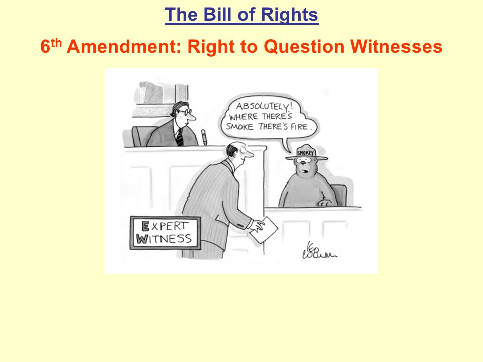 6th Amendment: Right to Question Witnesses
