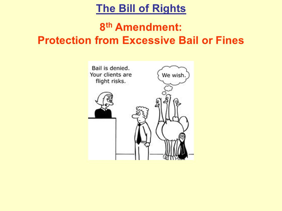 8th Amendment: Protection from Excessive Bail or Fines