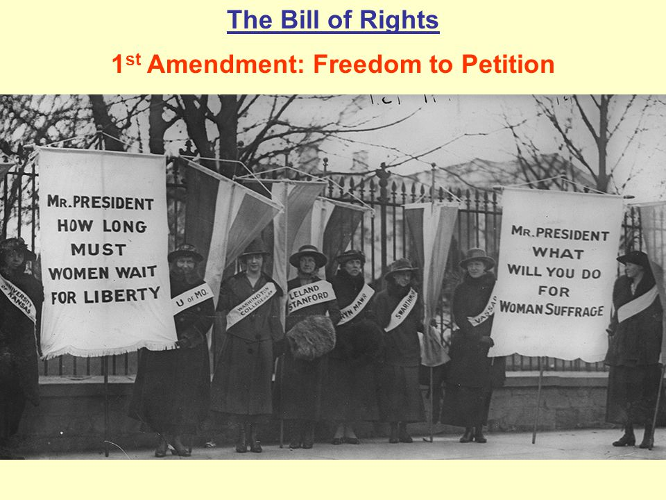 1st Amendment: Freedom to Petition