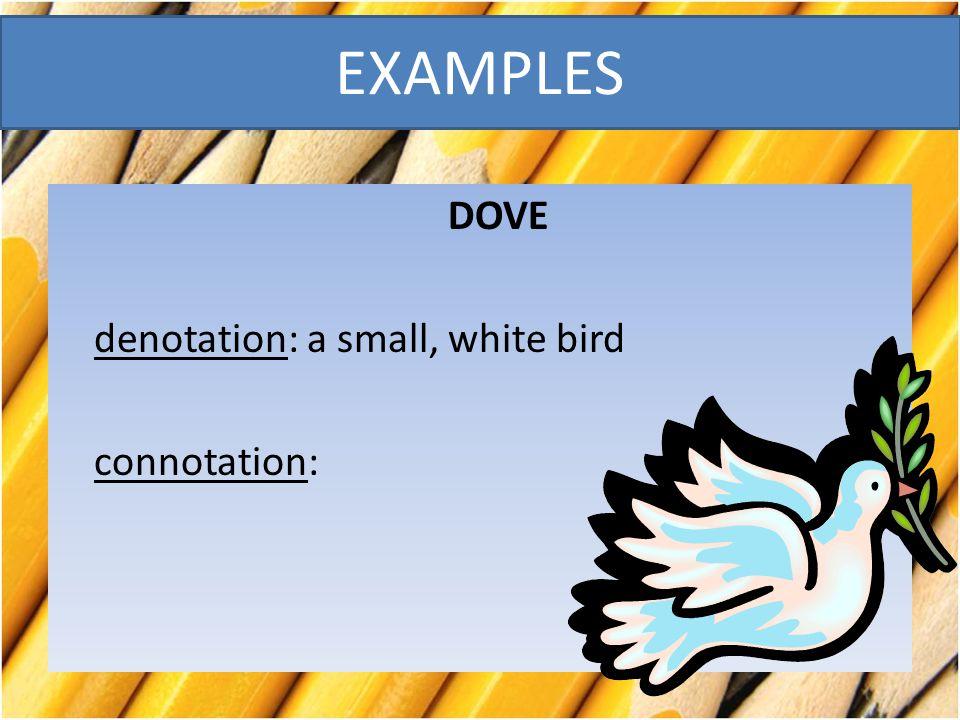 DOVE denotation: a small, white bird connotation:
