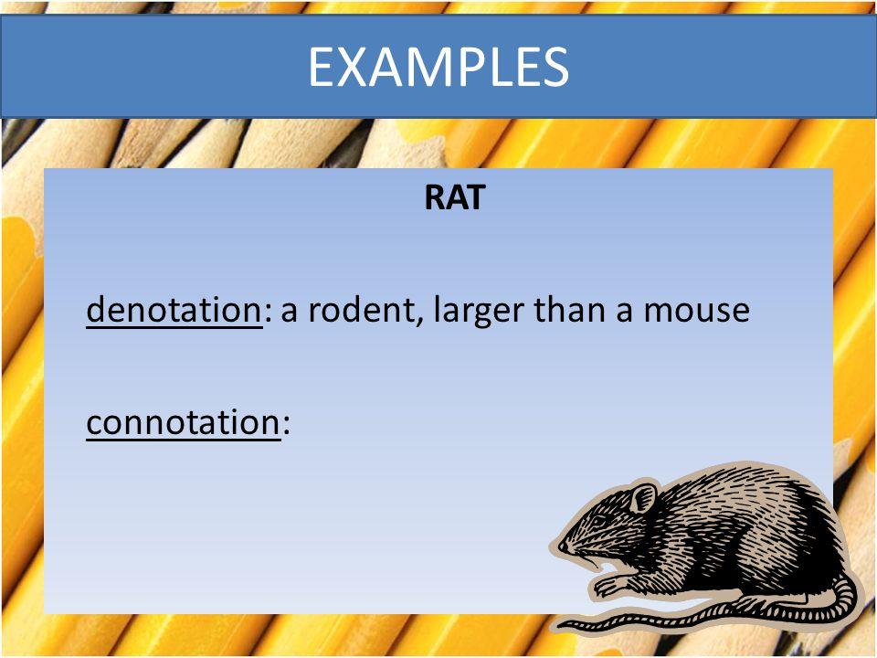 RAT denotation: a rodent, larger than a mouse connotation: