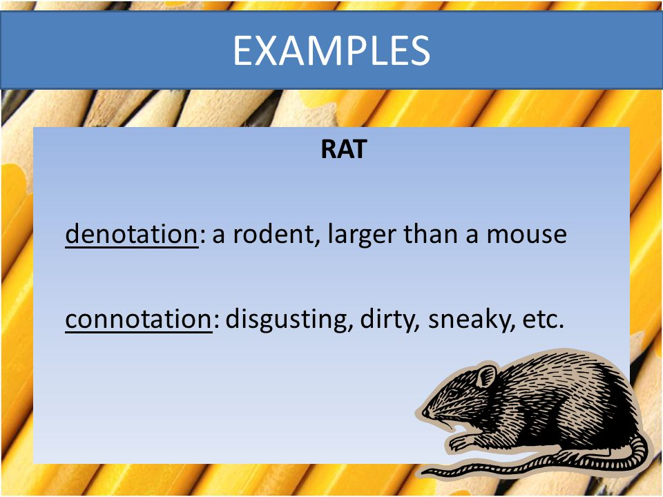 EXAMPLES RAT denotation: a rodent, larger than a mouse connotation: disgusting, dirty, sneaky, etc.