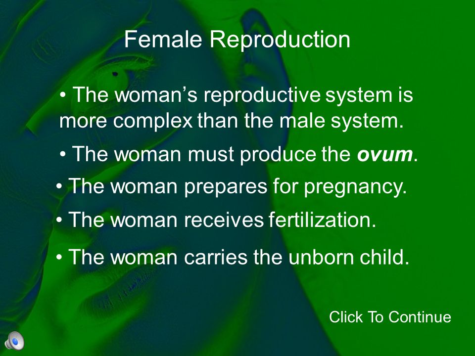 The woman's reproductive system is more complex than the male system.