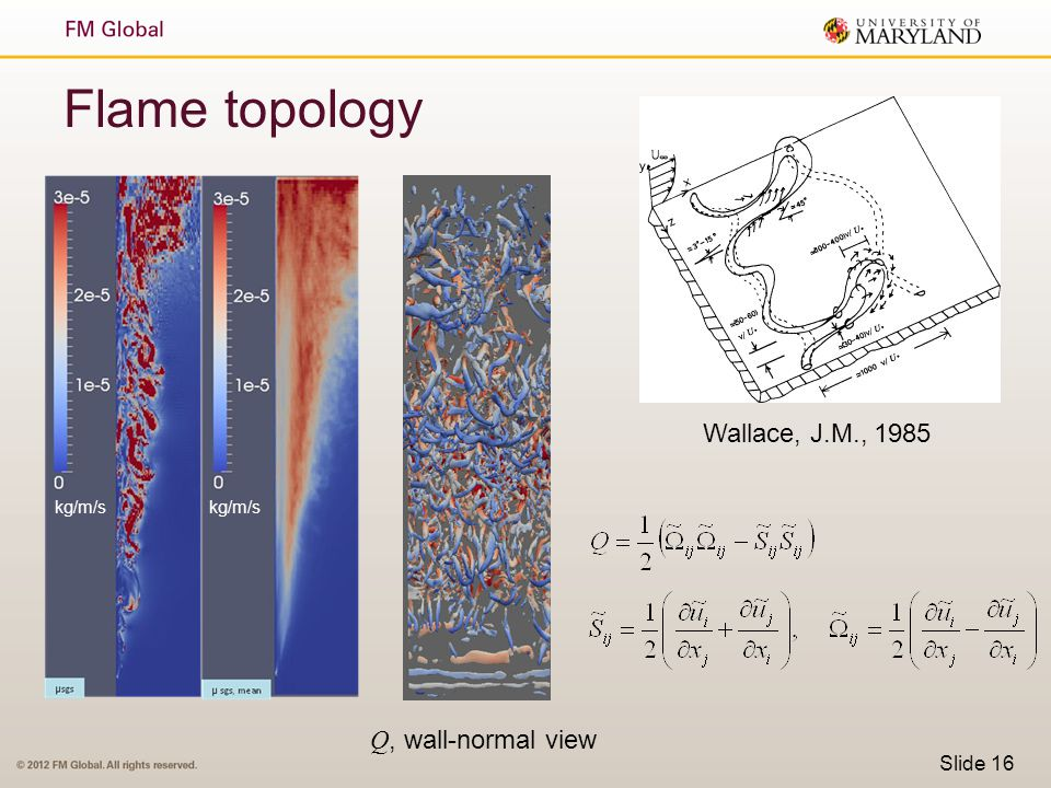 Flame topology Wallace, J.M., 1985 kg/m/s kg/m/s Q, wall-normal view