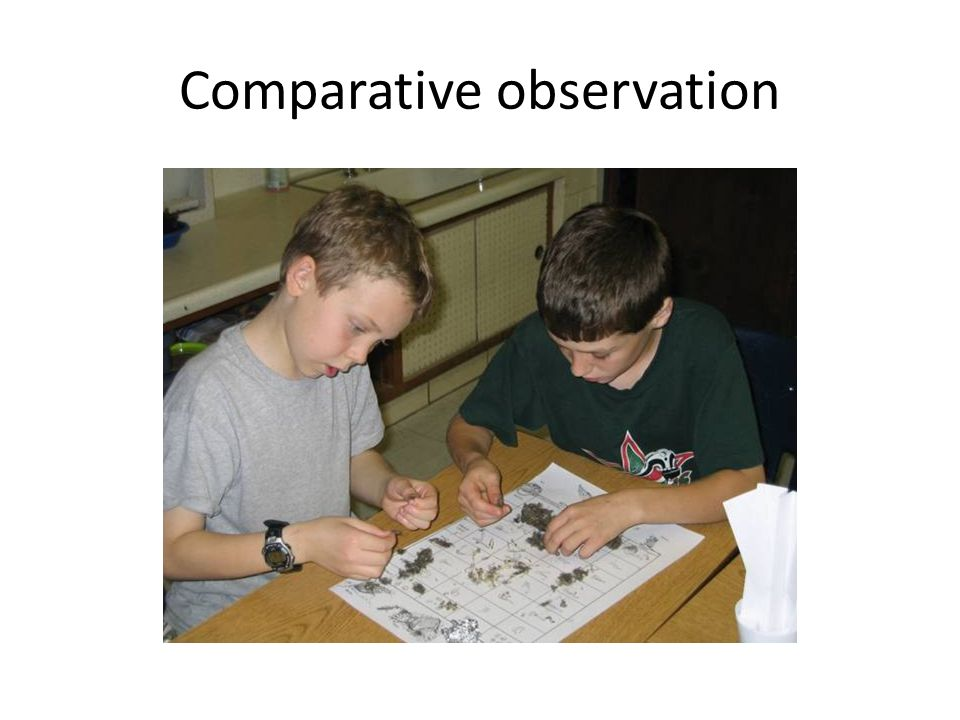 Comparative observation