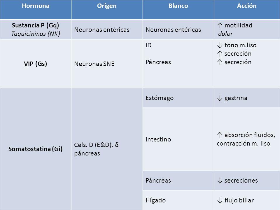 Hormona Origen. Blanco. Acción. Sustancia P (Gq) Taquicininas (NK) Neuronas entéricas. ↑ motilidad.