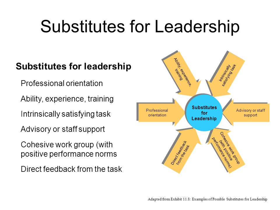 leadership substitute theory Chapter twenty one leadership  transactional and transformational leadership attribution theory of leadership  substitute for individual.