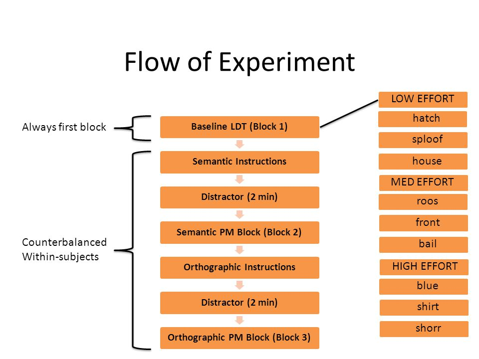 Flow of Experiment LOW EFFORT hatch Always first block sploof house