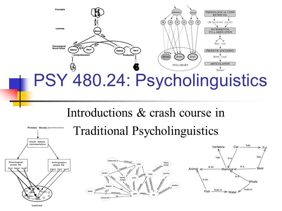 PSY 480.24: Psycholinguistics