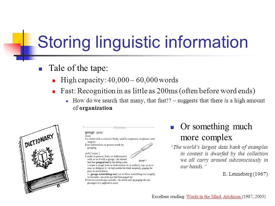 Storing linguistic information