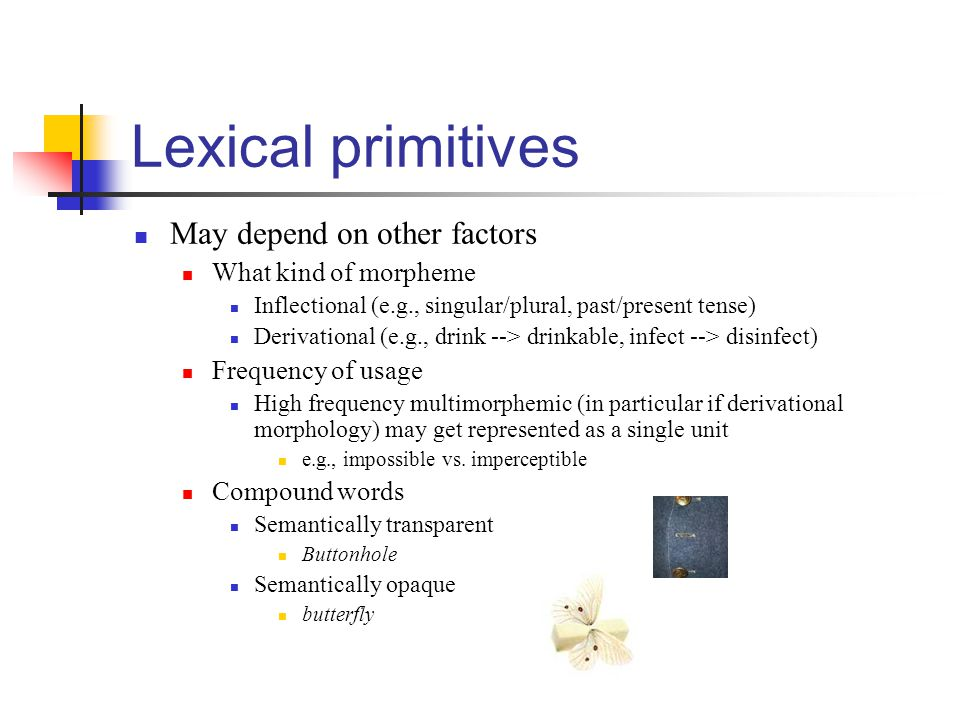 Lexical primitives May depend on other factors What kind of morpheme