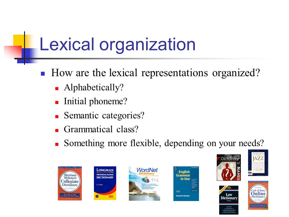 Lexical organization How are the lexical representations organized