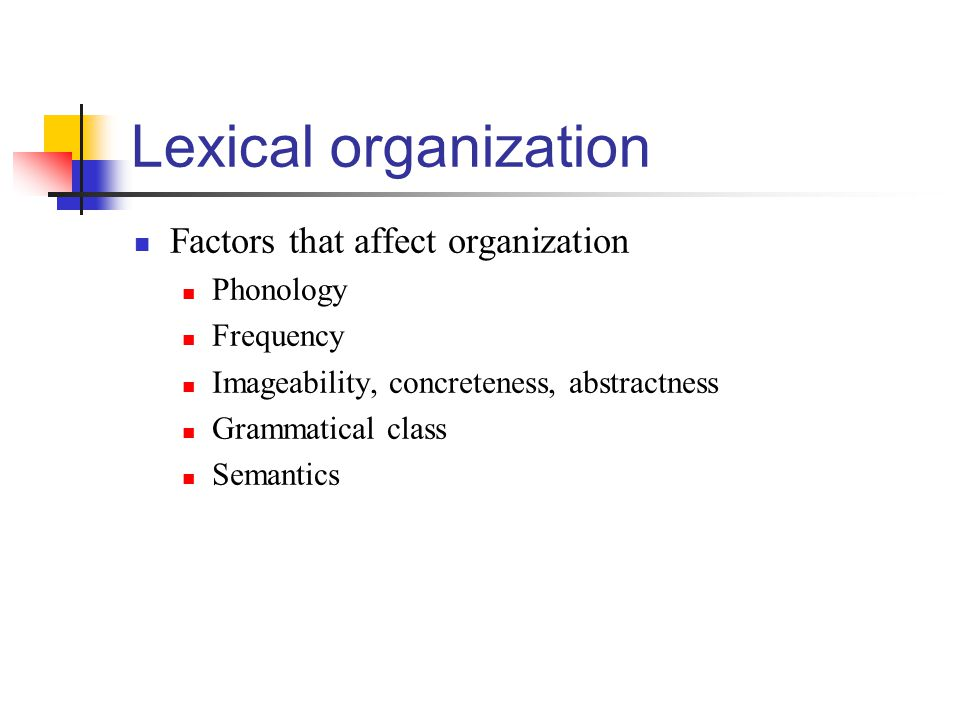 Lexical organization Factors that affect organization Phonology