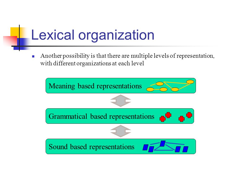 Lexical organization Meaning based representations