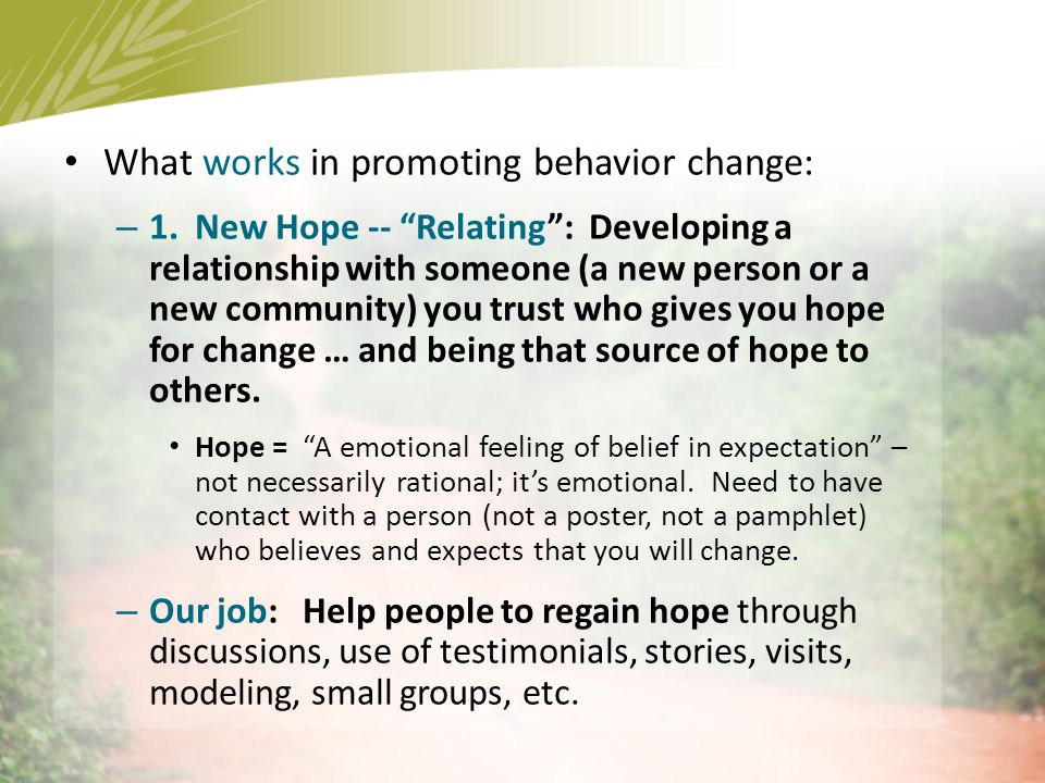 What works in promoting behavior change: