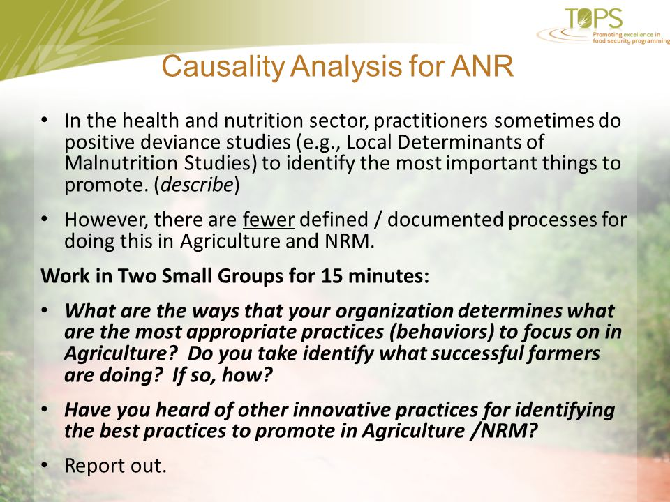 Causality Analysis for ANR