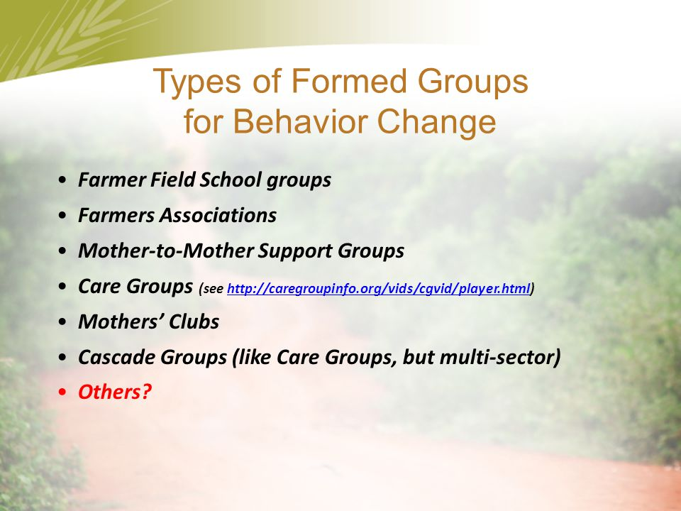 Types of Formed Groups for Behavior Change