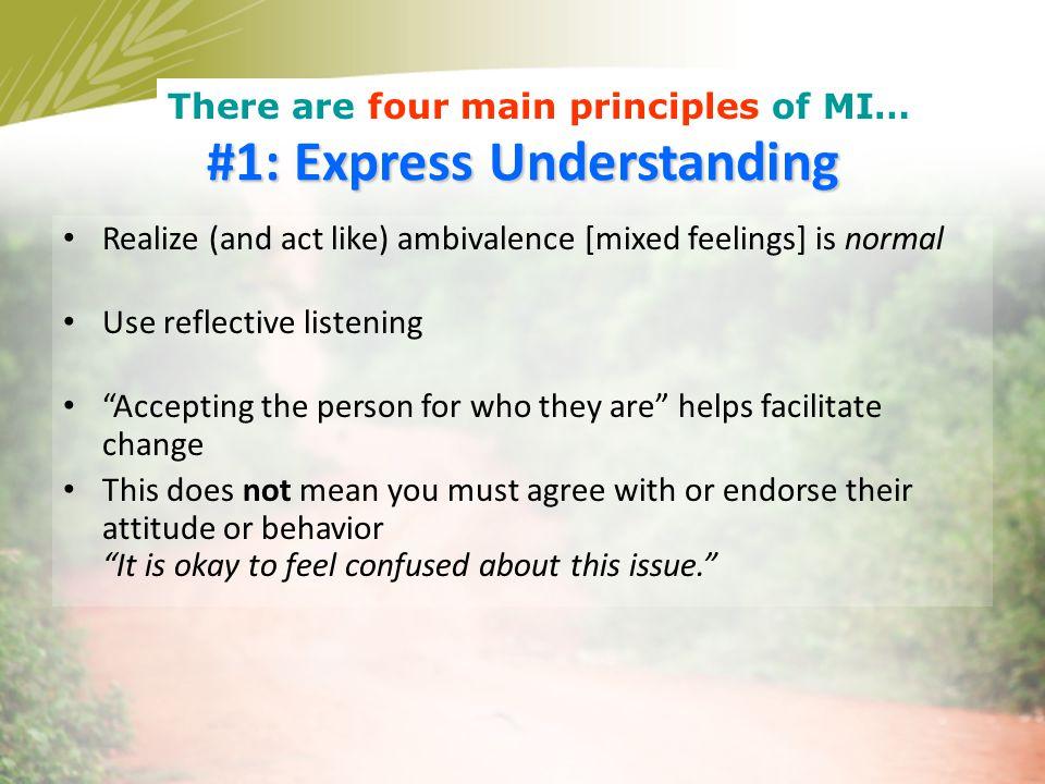 #1: Express Understanding