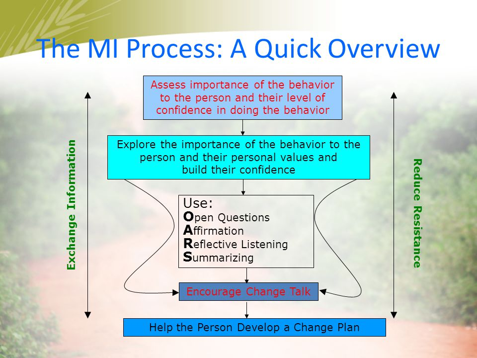 The MI Process: A Quick Overview