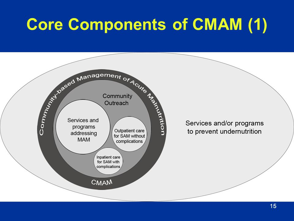 Core Components of CMAM (1)